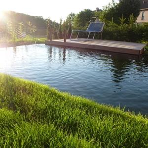Viridee nv -Zwemvijvers, vijvers en zwembaden